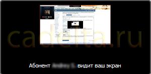 Рис. 7. Окно подтверждения начала показа экрана.